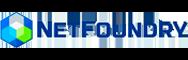 netfoundry logo diw